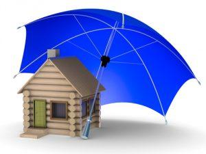 Assurance immédiate en ligne